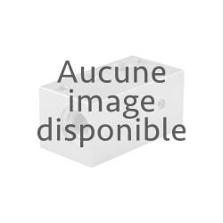 Module kit Proportionnel électronique 4 ELE APEM PWM